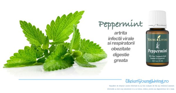 Ulei Esential de Menta / Peppermint