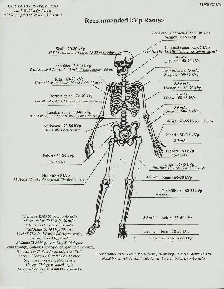 les 25 meilleures id u00e9es de la cat u00e9gorie technologue en radiologie sur pinterest