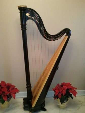Lyon & Healy Prelude Harp I might get this kind of harp
