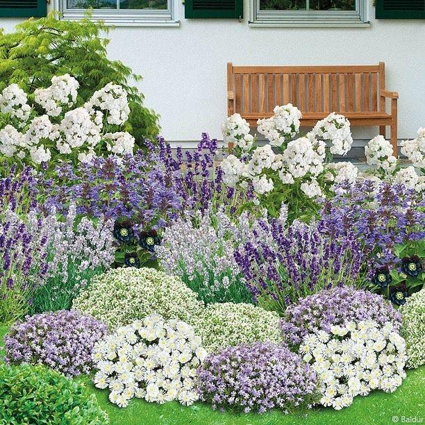 Gefallt 2 722 Mal 23 Kommentare Mein Schoner Garten Mein Schoener Garten Auf Instagram Es In 2020 Cottage Garden Plants Rock Garden Landscaping Modern Garden