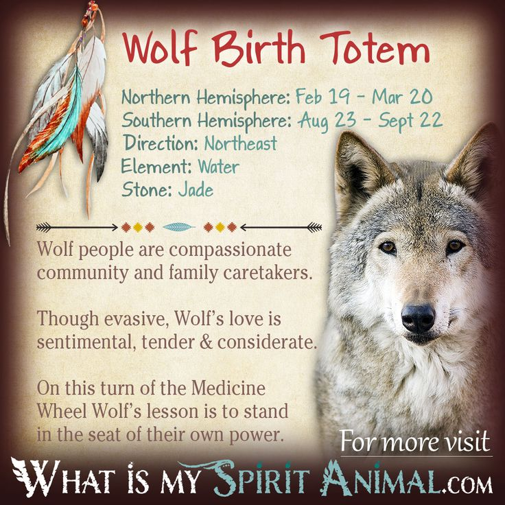 Wolf Native American Zodiac Sign Birth Totem
