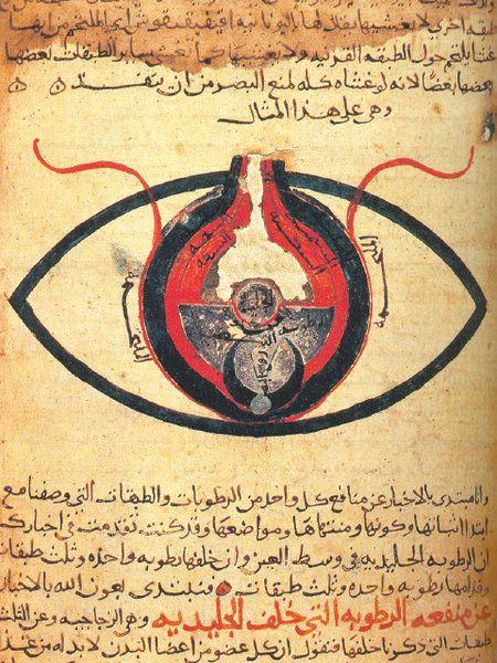 The eye according to Hunain ibn Ishaq.    This manuscript, dated circa 1200CE, is kept at the Cairo National Library.