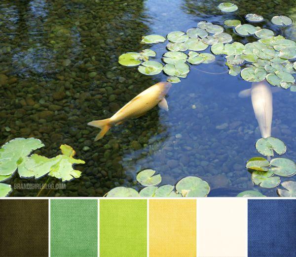 Color palette 124 koi pond color palettes and for Koi pond color