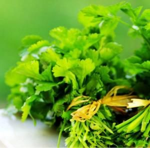 Parsley health benefits & nutrition facts. https://www.budonation.com/nutrition-fact/163/parsley-health-benefits-nutrition-facts