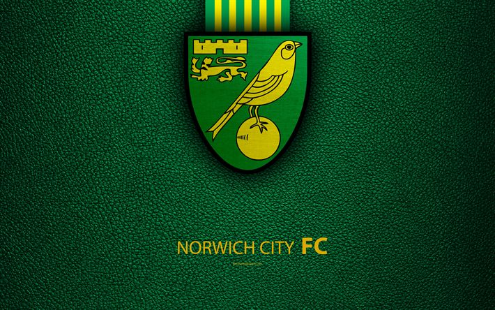 Download wallpapers Norwich City FC, 4K, English Football Club, logo, Football League Championship, leather texture, Norwich, UK, EFL, football, Second English Division