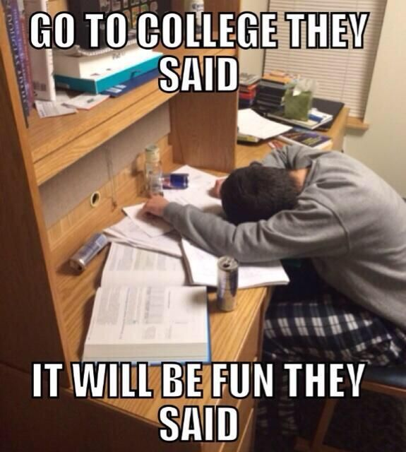 Funny Quotes About College: Best 25+ Final Exam Meme Ideas On Pinterest