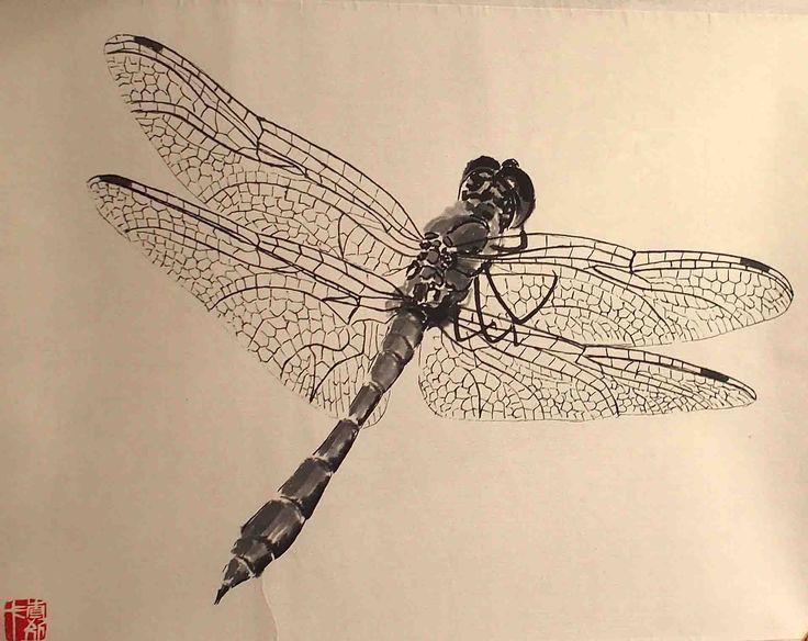 Dragonfly (vážka)