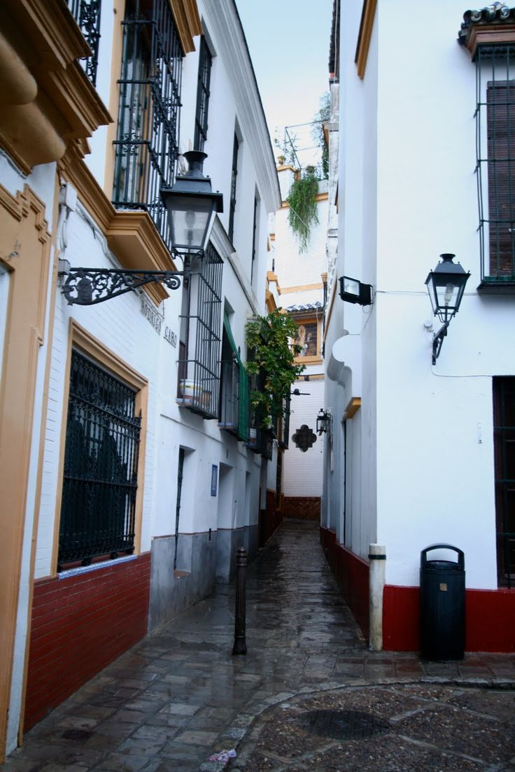 La Juderia (Barrio Santa Cruz):   Expelled from Spain in 1492, there no longer remains evidence of the Jewish people in this neighborhood that bears their name.