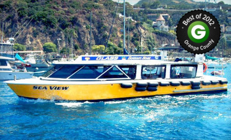 Catalina island tours from catalina adventure tours up to