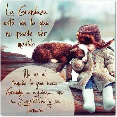 Frases Bonitas Para Facebook: Imagenes Bonitas Con Reflexiones Sobre La Grandeza...