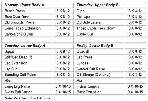 This workout program is for the ladies who want a great gym workout routine. Before I had my recent son, I would go to the gym 5 times a week and I used this easy 12-week lifting program. I added this to my daily workouts. I had never been fit in my life and the ...