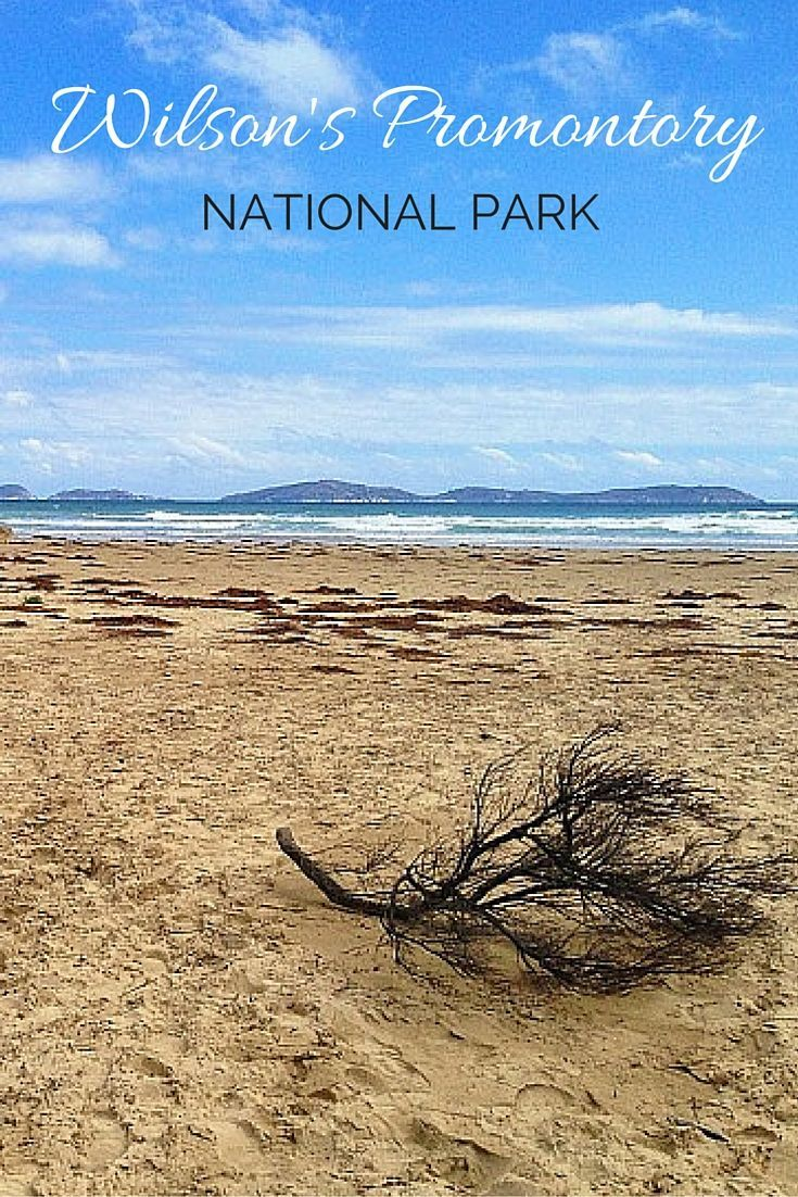 Top tips for exploring gorgeous Wilson's Promontory National Park in Victoria, Australia.