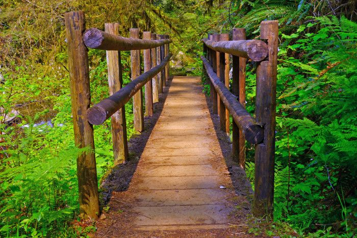 8. Sweet Creek Trail