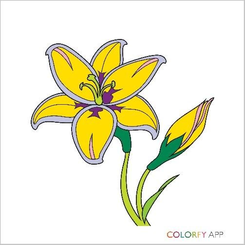 8 mejores imágenes de my coloring patterns en Pinterest | Colorear ...