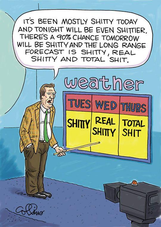 funny-weather-forecast-news-anchor-TV-camera
