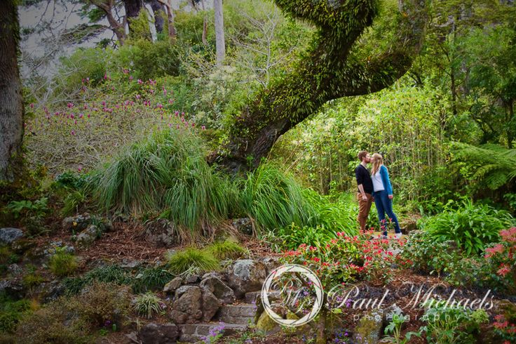Couple portraits with David and Amy in the botanical gardens. PaulMichaels Wellington wedding photography http://www.paulmichaels.co.nz/