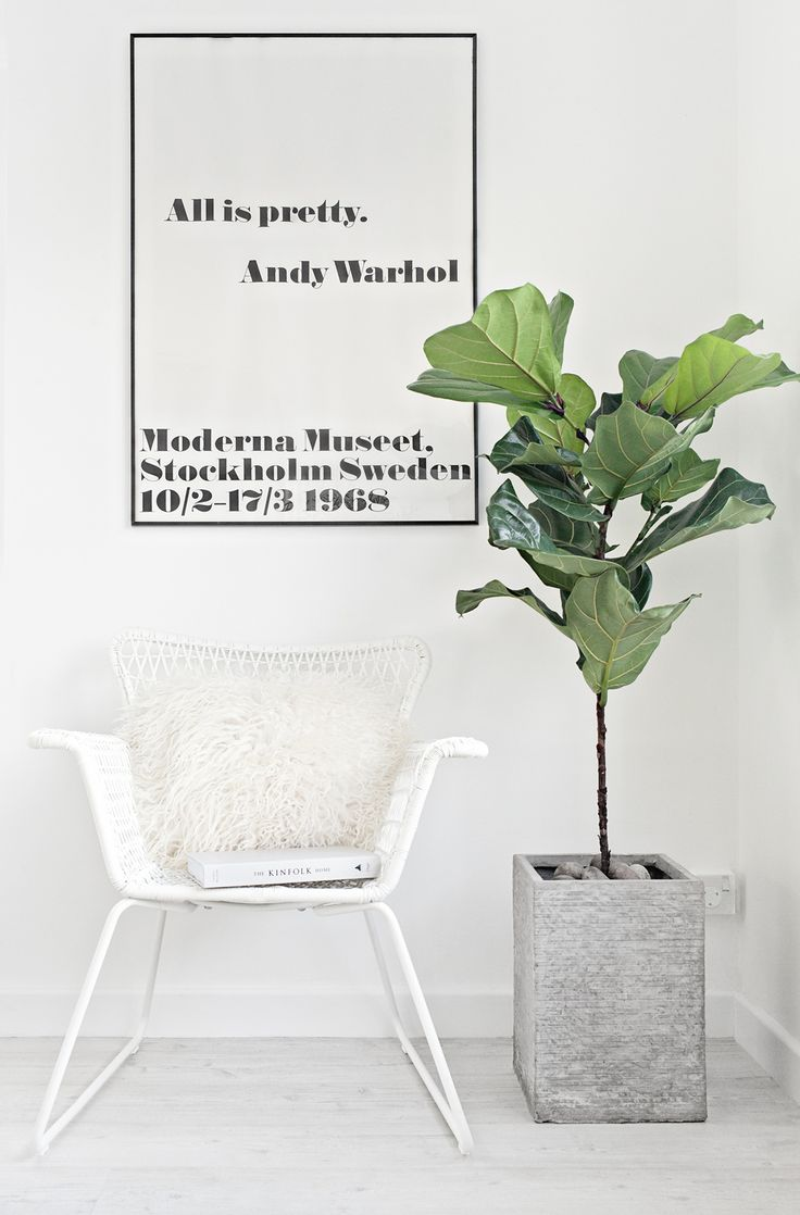 Sheepskin Cushion from Milabert | Fiddle Fig Tree | All is pretty. Andy Warhol