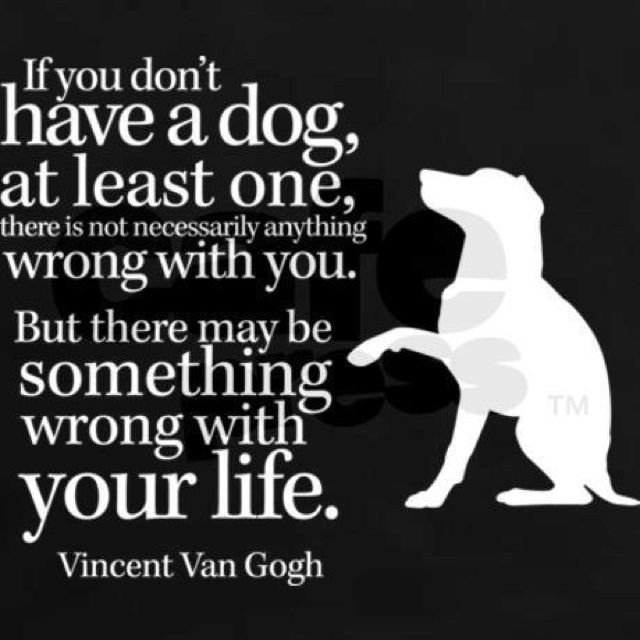 If you don't have a dog.... #vincentvangogh #wisewords