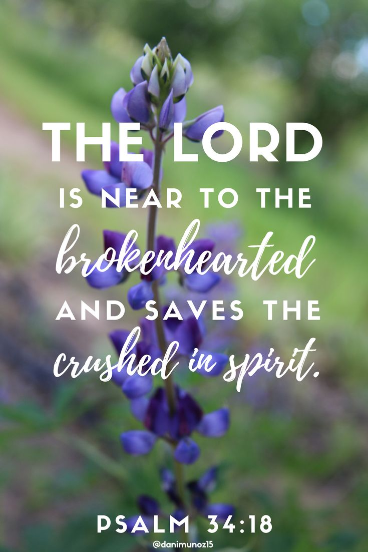 Image result for Psalm 34:18English Standard Version (ESV) 18 The Lord is near to the brokenhearted and saves the crushed in spirit.