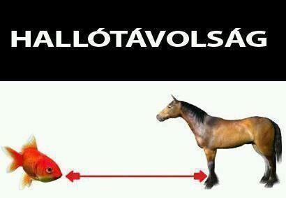 Hal-ló-távolság >.< :D