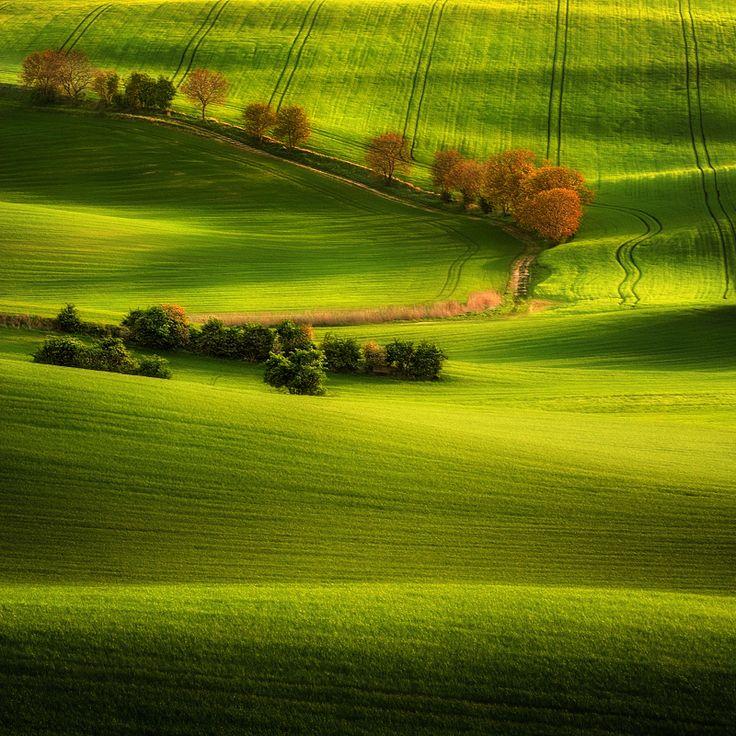 Green Fields...