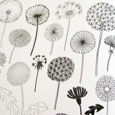 "print & pattern:""20 Ways to Draw a Tree and 44 Other Nifty Things from Nature"" by Eloise Renouf"