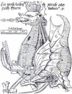 medieval ingeni   CATAPULTA MEDIEVAL. Las tropas sitiadas utilizan una catapulta ...again with the mystry dragon