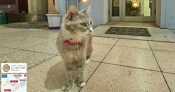 Hiroshima's tourism board created Cat Street View Map to offer a new purr-spective on a port town known for its cat population.