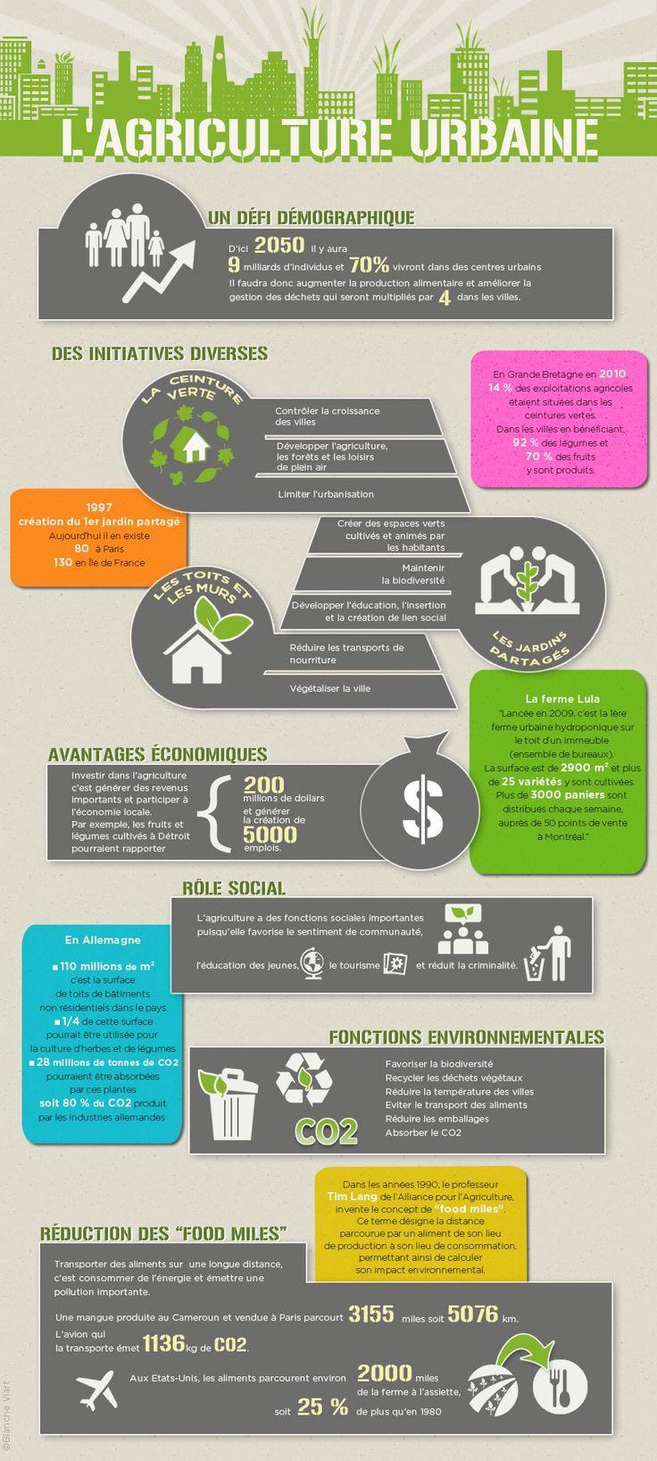 Infographie : l'agriculture urbaine