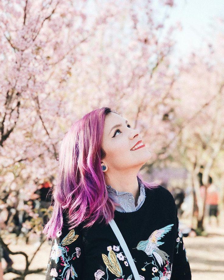 Não me canso de admirar a beleza do Bosque das Cerejeiras  Obrigada amor @_xraposox pela companhia e foto (nem parece que foi feita com celular ) #cherryblossom