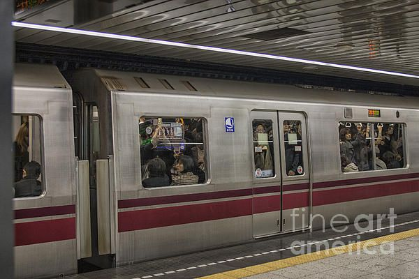 Busy Subway In Tokyo by Patricia Hofmeester | Travel and transport