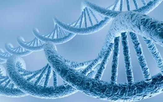 Волновая генетика на страже нравственности