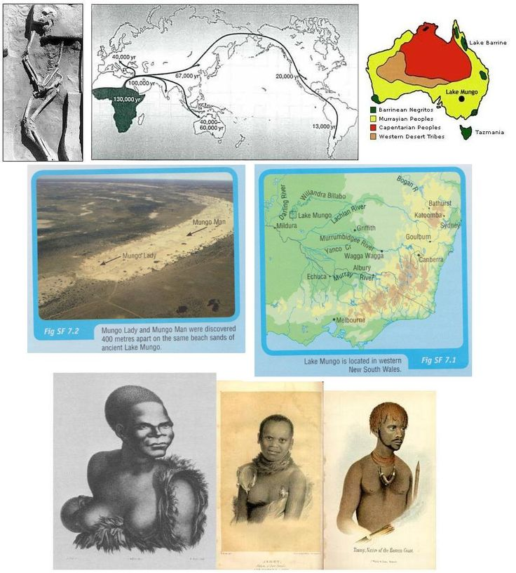 A Pictorial graphic about Mungo Man