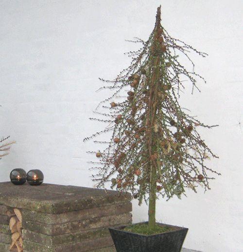 Billede fra http://kreativekrumspring.dk/wp-content/uploads/2012/11/Vintertr%C3%A61.gif.