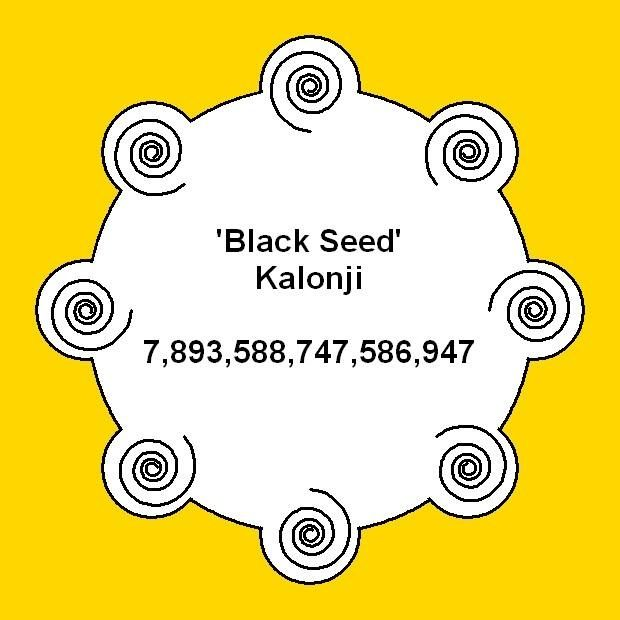 For more info about the benefits of Black Seed see here http://themindunleashed.org/2013/12/16-reasons-black-seed-remedy-everything-death.html