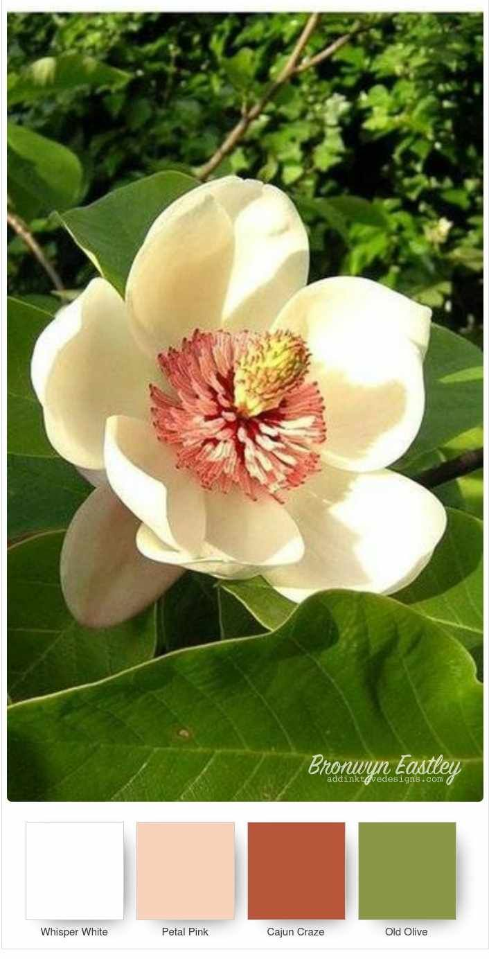 Good Morning Magnolia Stampin Up Colour Combos In 2020 Magnolia Colors Color Combos Color