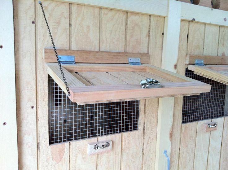 Chicken Coop Windows