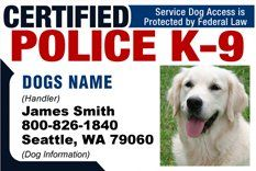 PERSONALIZE Dean and Tyler 'CERTIFIED POLICE K9 -2' Dog ID Badge Bundle - 1 Handler's Custom ID Badge - 1 Dog's Custom ID Badge - Design-2 - Horizontal * Find out more about the great product at the image link. (This is an affiliate link and I receive a commission for the sales)