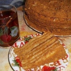 Honey cake with custard. Recipes with photos of delicious cakes.