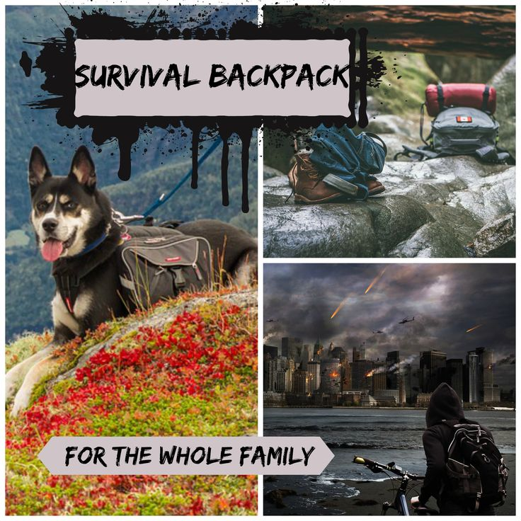 I've put together a list of backpacks for the whole family including your pets. You can read more here http://www.tonyarpugh.com/survival-backpack-every-member-family/