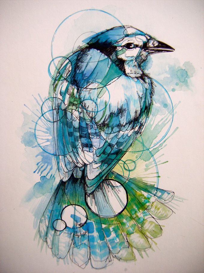 this is so pretty! i love the colors!  the circles add an interesting flairArt Drawing, Watercolors Animal, Painting Art, Colors Pattern, Abbie Diamonds, Watercolors Art, Blue Jay, Birds, Art Illustration