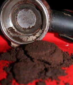 Borra de café - Reaproveitamentos