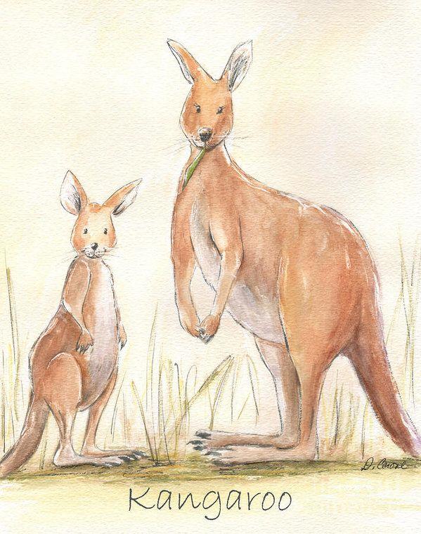 Q Significa Kangaroo 17 best Moles images o...