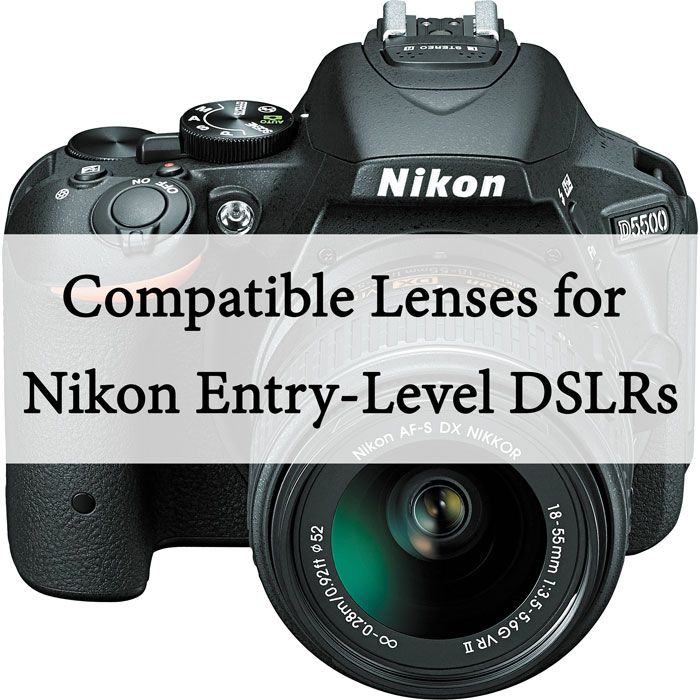 A list of lenses compatible with the Nikon D40, D60, D3000, D3100, D3200, D3300, D5000, D5100, D5200, D5300 and D5500.