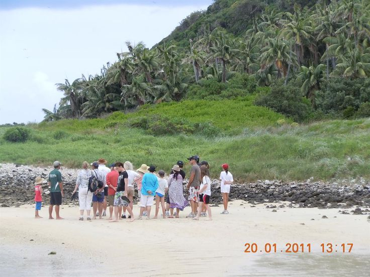 Marine Adventures - North Bay Turtle & Nature Tour www.lordhoweisland.info