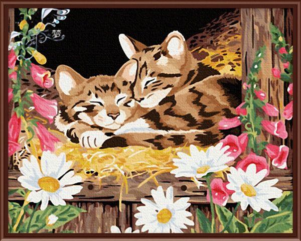 Горячая распродажа картины в рамках по номерам ручной росписью маслом на холсте милого Cat стены искусства домашнего декора для гостиной G034купить в магазине Yiwu Xinshixian Arts and Crafts Co., Ltd.наAliExpress