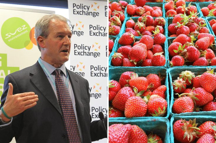 """Get pensioners to pick fruit and vegetables in the fields"" says Tory minister. ... This fresh revelation reveals just how cold-hearted and out of touch Paterson and some of his ilk are.  The notion that the elderly are somehow slacking and need to be put to work if they're to have any social value is a grotesque distortion of reality ..."
