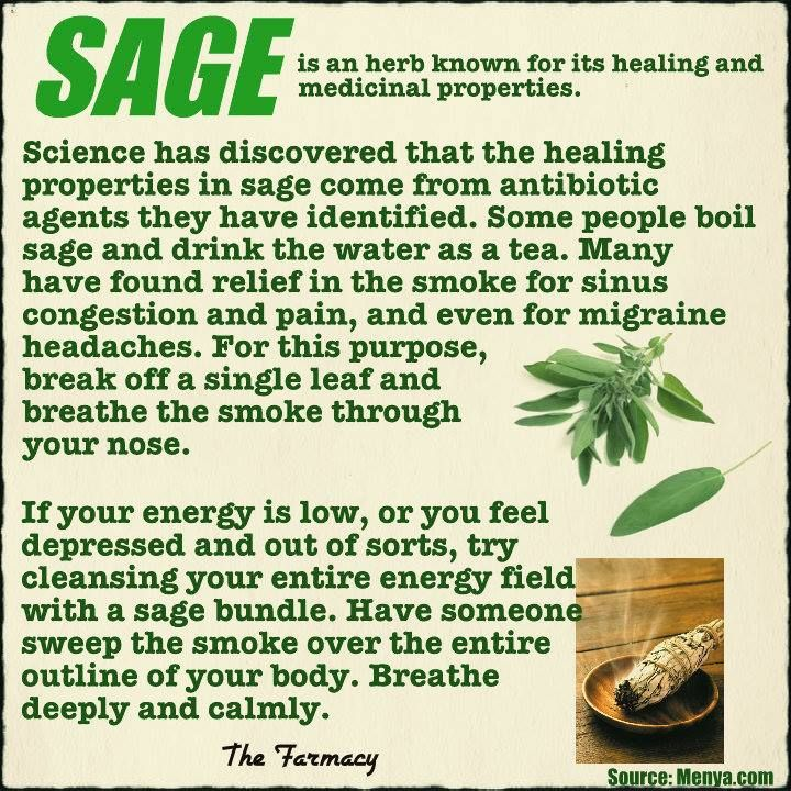 i have never tried sage smoke to alleviate sinus congestion. i will have to look into this a bit more.