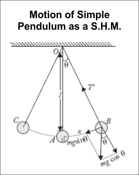 Motion of Simple Pendulum as a S.H.M