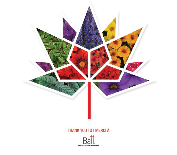 Image result for canada 150 art ideas